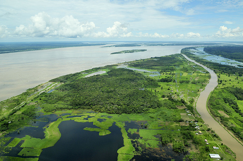 An aerial view of the Amazon rainforest, near Manaus, Brazil.