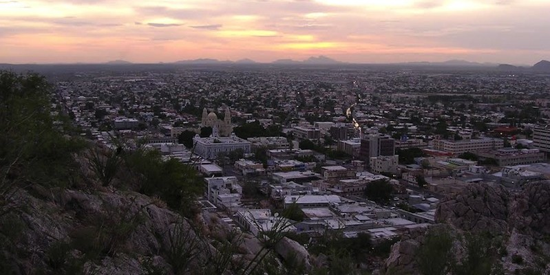 Hermosillo, Mexico, where someone has been methodically killing domestic dogs across the city.