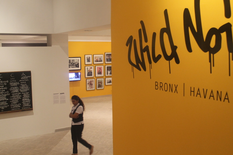 """A museum employee crosses the entranceway to the """"Wild Noise"""" exhibition."""