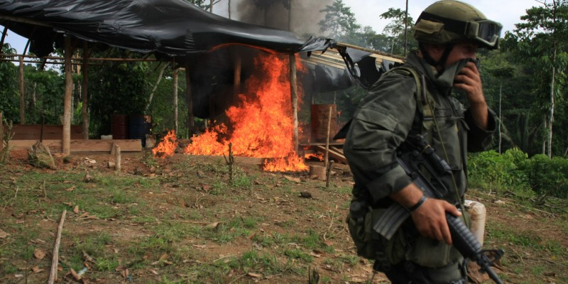 Coca eradication efforts in Colombia. Image: Colombian National Police, CC BY-SA 2.0